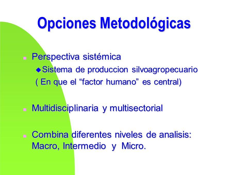 Opciones Metodológicas n Perspectiva sistémica u Sistema de produccion silvoagropecuario ( En que el factor humano es central) n Multidisciplinaria y