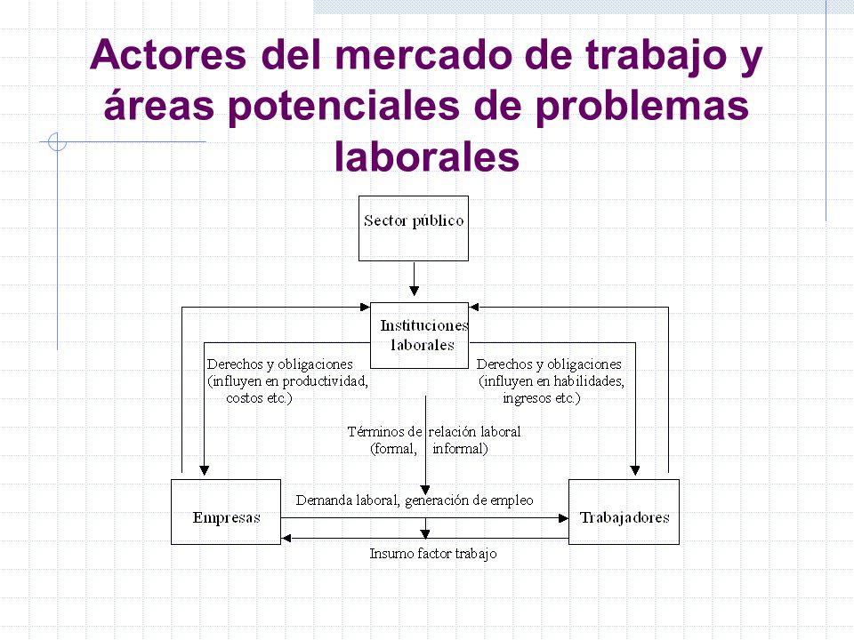 Actores del mercado de trabajo y áreas potenciales de problemas laborales