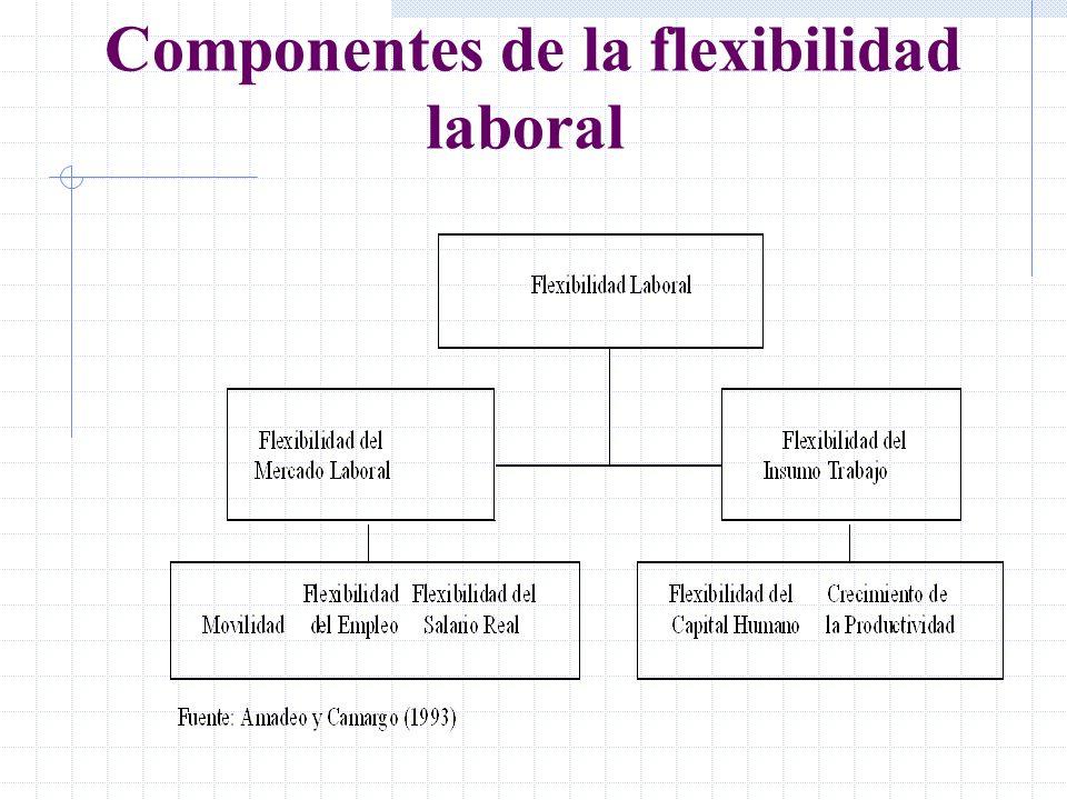 Componentes de la flexibilidad laboral
