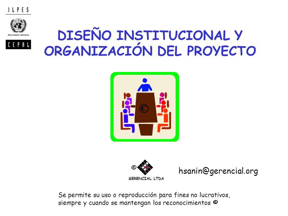 DISEÑO INSTITUCIONAL Y ORGANIZACIÓN DEL PROYECTO Se permite su uso o reproducción para fines no lucrativos, siempre y cuando se mantengan los reconoci