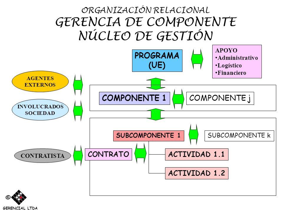 ORGANIZACIÓN RELACIONAL GERENCIA DE COMPONENTE NÚCLEO DE GESTIÓN SUBCOMPONENTE 1 PROGRAMA (UE) ACTIVIDAD 1.1 ACTIVIDAD 1.2 COMPONENTE 1COMPONENTE j AP