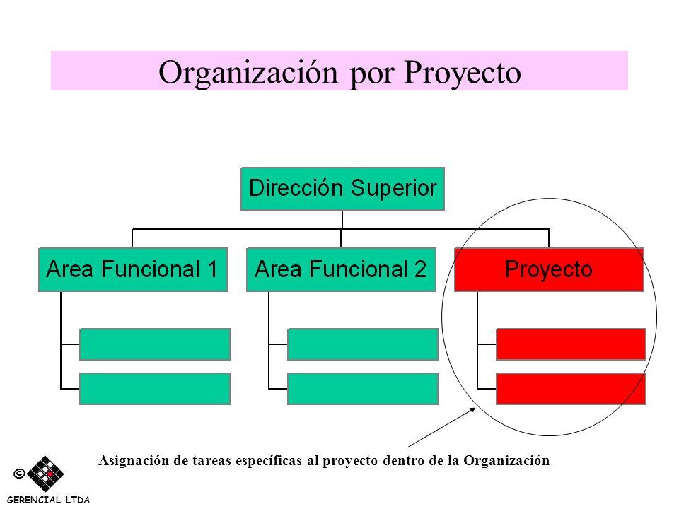 Organización por Proyecto Asignación de tareas específicas al proyecto dentro de la Organización © GERENCIAL LTDA