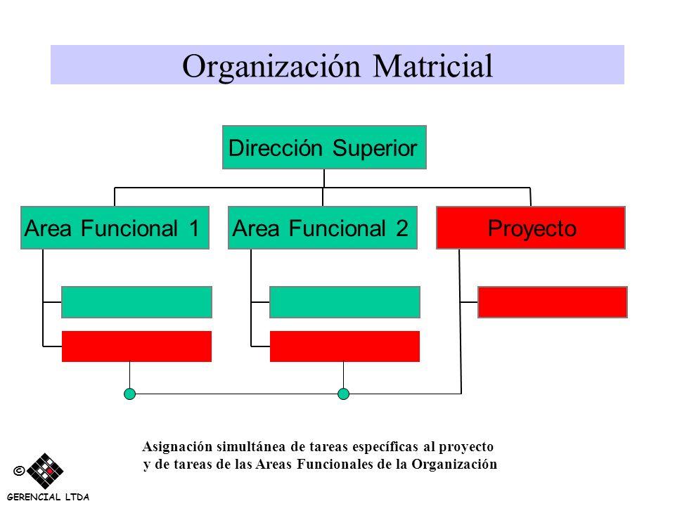 Organización Matricial Area Funcional 1Area Funcional 2Proyecto Dirección Superior Asignación simultánea de tareas específicas al proyecto y de tareas