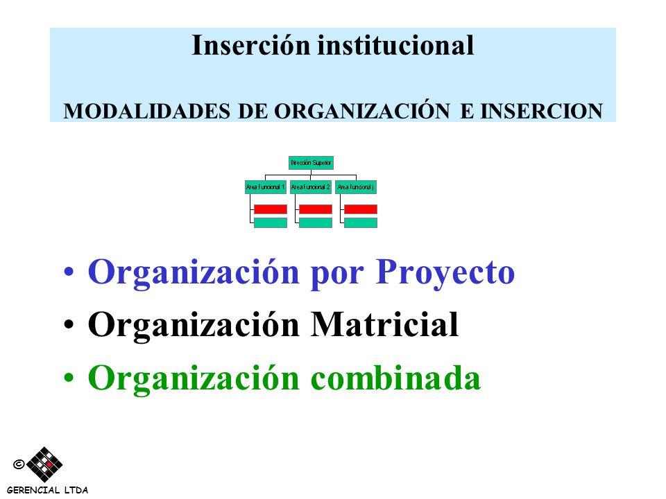Inserción institucional MODALIDADES DE ORGANIZACIÓN E INSERCION Organización por Proyecto Organización Matricial Organización combinada © GERENCIAL LT