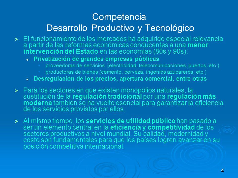 4 Competencia Desarrollo Productivo y Tecnológico El funcionamiento de los mercados ha adquirido especial relevancia a partir de las reformas económic