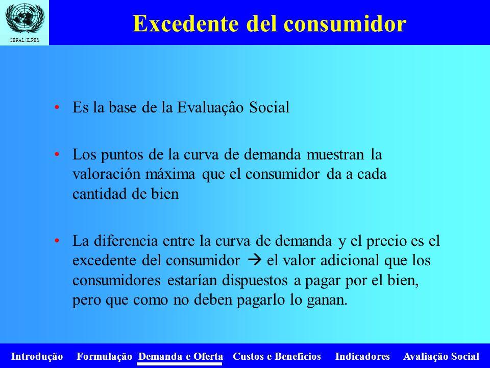 Introdução Formulação Demanda e Oferta Custos e Beneficios Indicadores Avaliação Social CEPAL/ILPES Elasticidad cruzada y tipo de bienes e xy >0 Biene