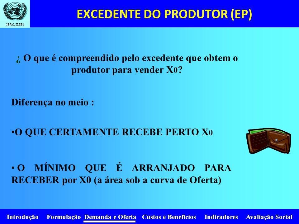 Introdução Formulação Demanda e Oferta Custos e Beneficios Indicadores Avaliação Social CEPAL/ILPES X 0 PxPx D P0P0 X0X0 A Z P1P1 H X1X1 Aumento do ex