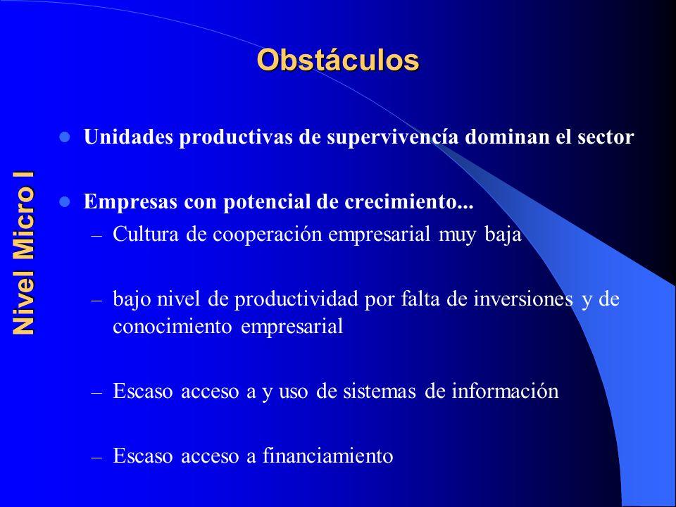 Obstáculos Unidades productivas de supervivencía dominan el sector Empresas con potencial de crecimiento... – Cultura de cooperación empresarial muy b