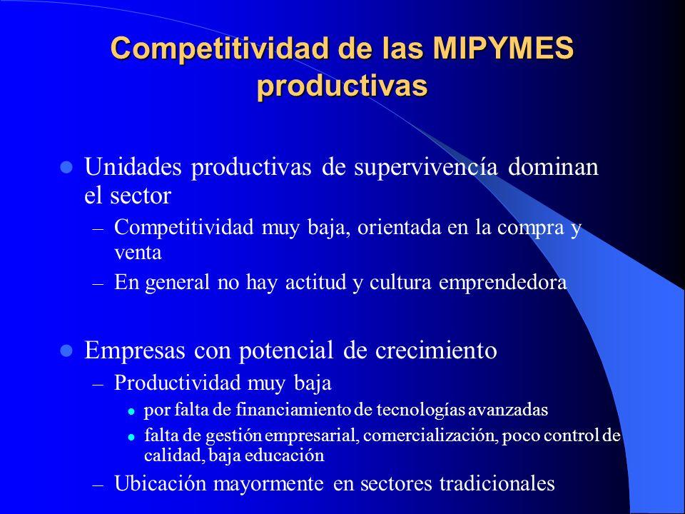 Competitividad de las MIPYMES productivas Unidades productivas de supervivencía dominan el sector – Competitividad muy baja, orientada en la compra y