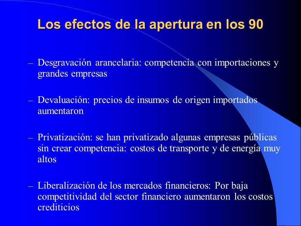 Los efectos de la apertura en los 90 – Desgravación arancelaria: competencia con importaciones y grandes empresas – Devaluación: precios de insumos de