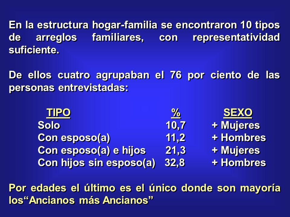 En la estructura hogar-familia se encontraron 10 tipos de arreglos familiares, con representatividad suficiente.