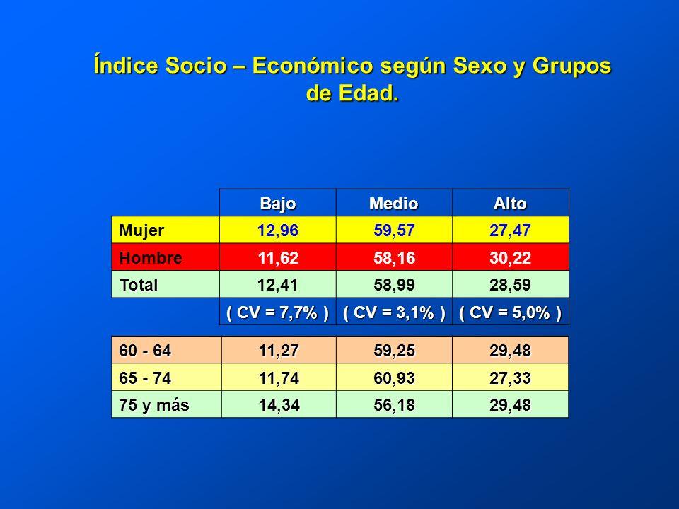 BajoMedioAlto Mujer12,9659,5727,47 Hombre11,6258,1630,22 Total12,4158,9928,59 ( CV = 7,7% ) ( CV = 3,1% ) ( CV = 5,0% ) Índice Socio – Económico según Sexo y Grupos de Edad.