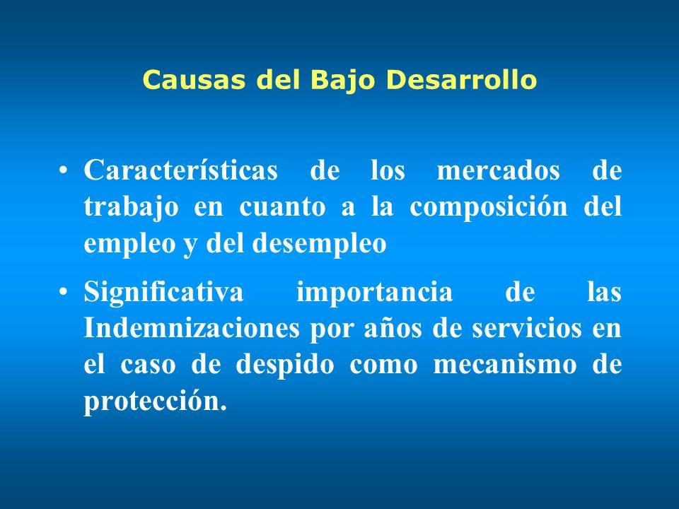 Causas del Bajo Desarrollo Características de los mercados de trabajo en cuanto a la composición del empleo y del desempleo Significativa importancia de las Indemnizaciones por años de servicios en el caso de despido como mecanismo de protección.
