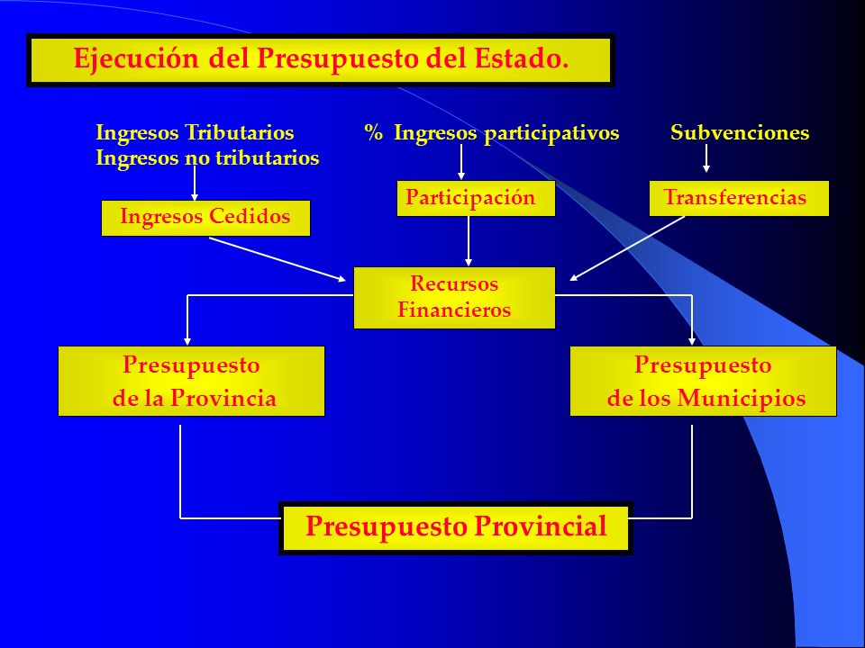 Ejecución del Presupuesto del Estado. Presupuesto de la Provincia Presupuesto Provincial Ingresos Tributarios Ingresos no tributarios % Ingresos parti