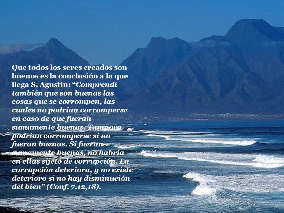 Que todos los seres creados son buenos es la conclusión a la que llega S. Agustín: Comprendí también que son buenas las cosas que se corrompen, las cu