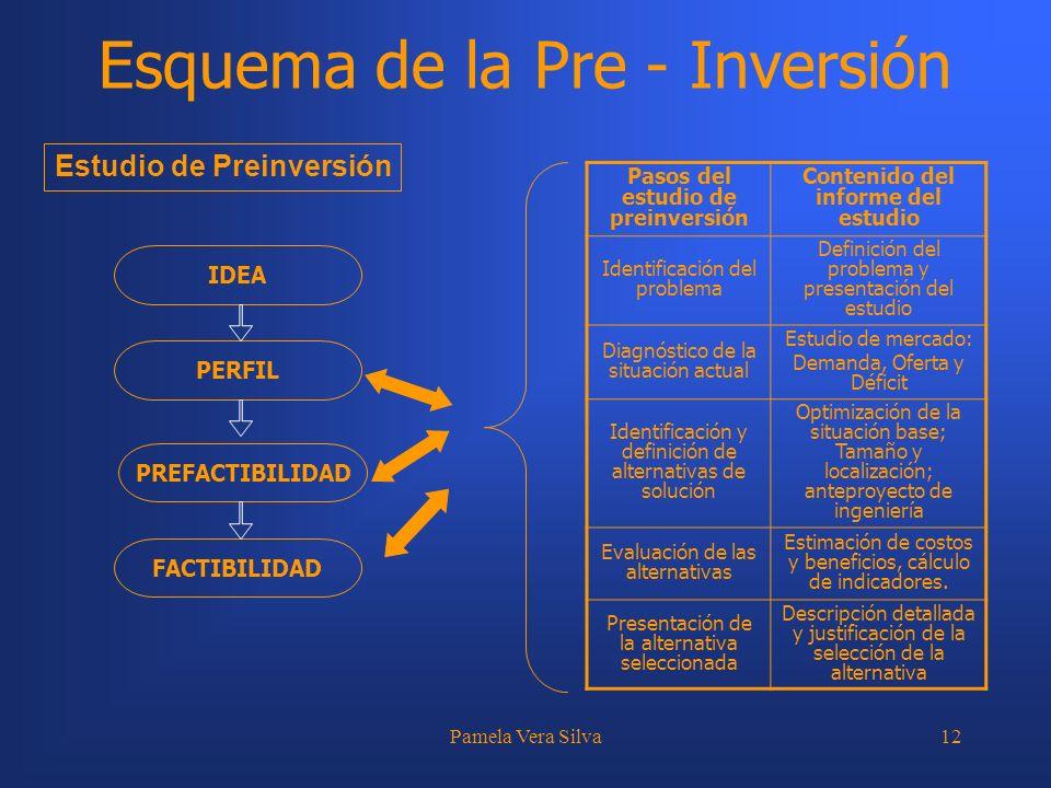 Pamela Vera Silva12 Esquema de la Pre - Inversión IDEA PERFIL PREFACTIBILIDAD FACTIBILIDAD Pasos del estudio de preinversión Contenido del informe del