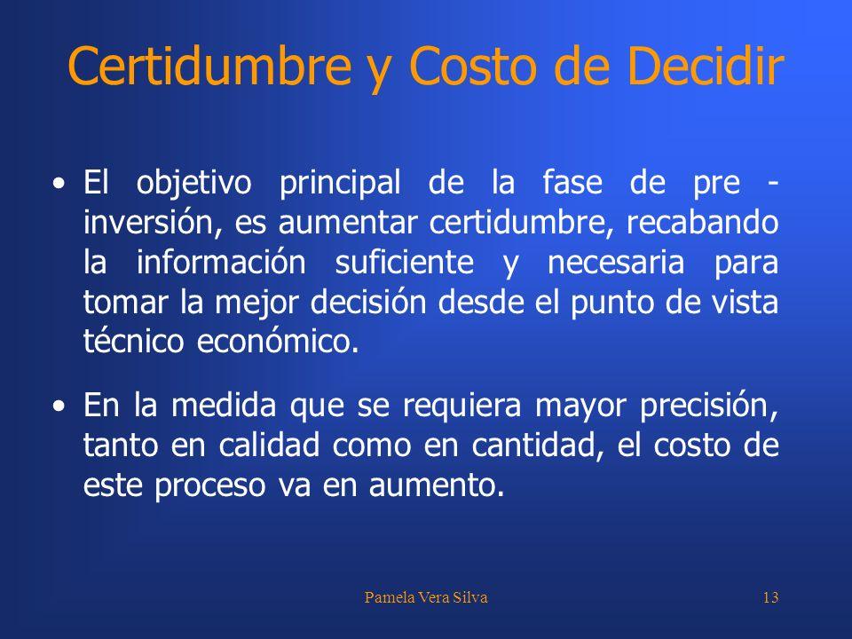 Pamela Vera Silva13 Certidumbre y Costo de Decidir El objetivo principal de la fase de pre - inversión, es aumentar certidumbre, recabando la informac