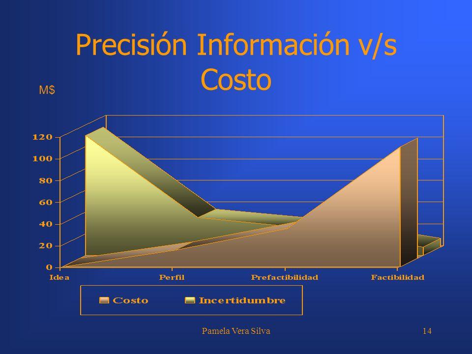 Pamela Vera Silva14 Precisión Información v/s Costo M$
