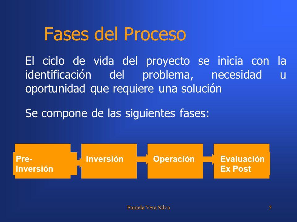 Pamela Vera Silva5 Fases del Proceso El ciclo de vida del proyecto se inicia con la identificación del problema, necesidad u oportunidad que requiere