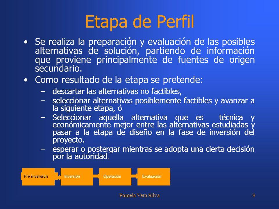 Pamela Vera Silva9 Etapa de Perfil Se realiza la preparación y evaluación de las posibles alternativas de solución, partiendo de información que provi