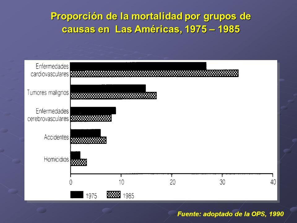 Proporción de la mortalidad por grupos de causas en Las Américas, 1975 – 1985 Fuente: adoptado de la OPS, 1990