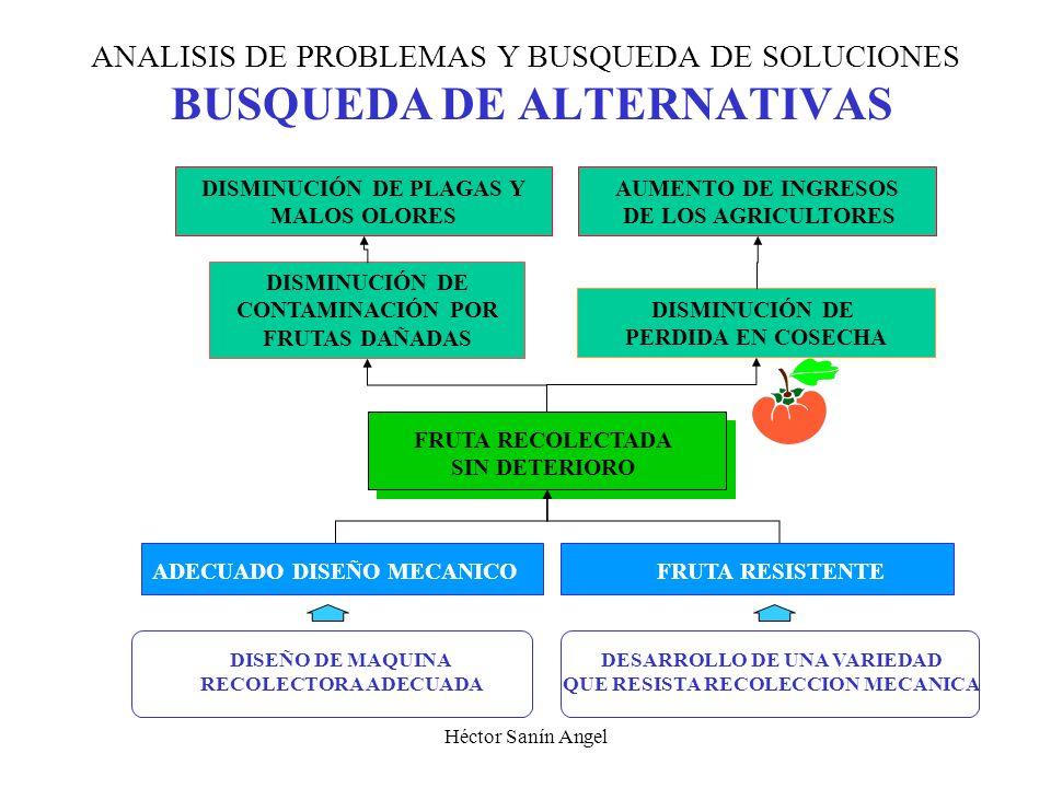 Héctor Sanín Angel ANALISIS DE PROBLEMAS Y BUSQUEDA DE SOLUCIONES DEFINICION DE OBJETIVOS Situación esperada Fines Medios ARBOL DE MEDIOS - FINES FRUT