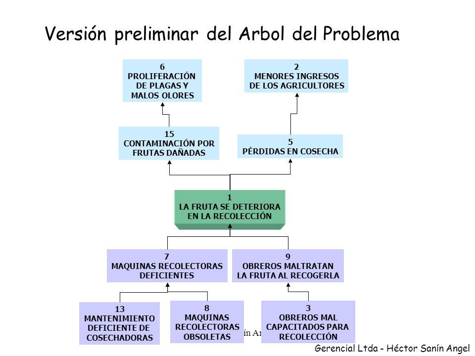PASO 2 Determinar el problema central