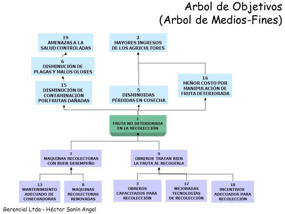 PASO 4 Definir Objetivos y ajustar Árbol de medios-fines
