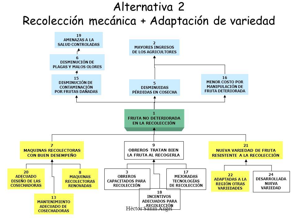 Héctor Sanín Angel 1 FRUTA NO DETERIORADA EN LA RECOLECCIÓN 2 MAYORES INGRESOS DE LOS AGRICULTORES 5 DISMINUIDAS PÉRDIDAS EN COSECHA 8 MAQUINAS RECOLE
