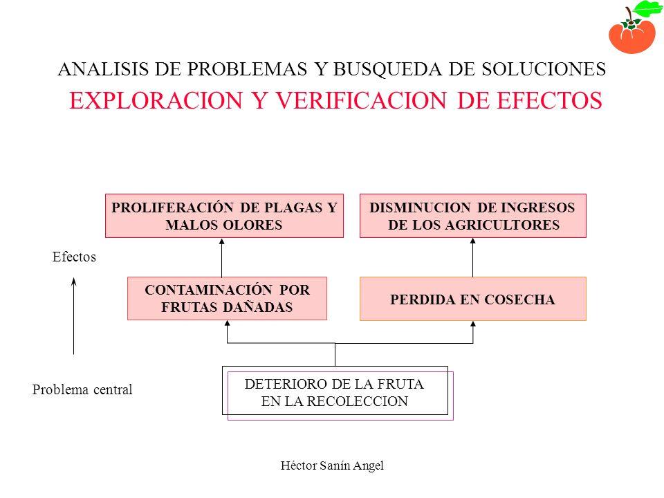 Héctor Sanín Angel ANALISIS DE PROBLEMAS Y BUSQUEDA DE SOLUCIONES DEFINICION DE UN PROBLEMA CENTRAL DETERIORO DE LA FRUTA EN LA RECOLECCION EL CASO DE