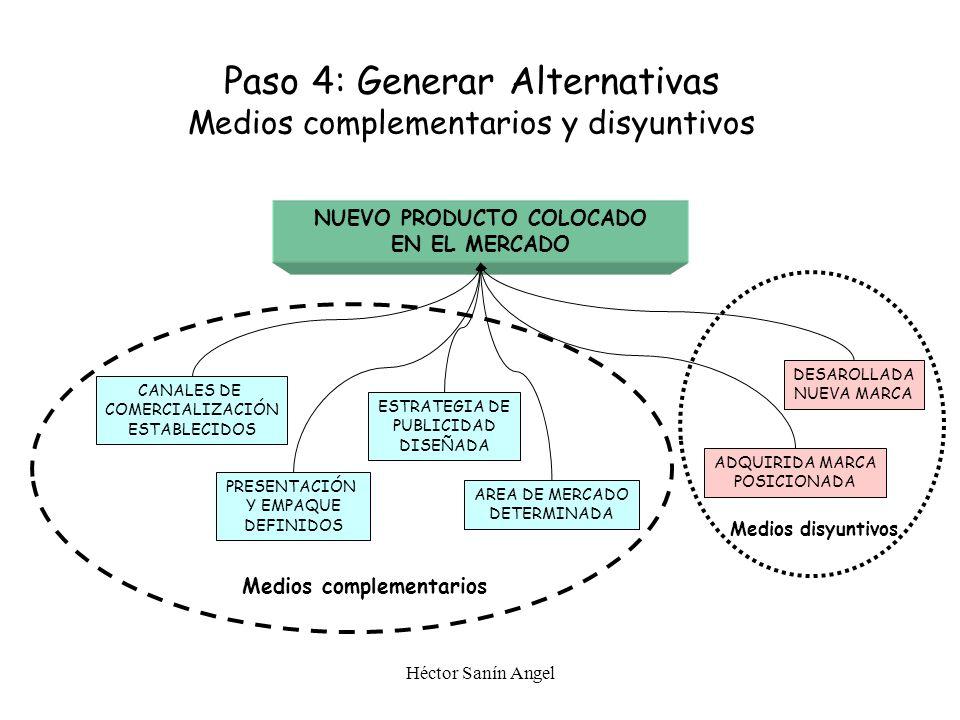 PASO 4 Generación de alternativas Gerencial Ltda - Héctor Sanín Angel