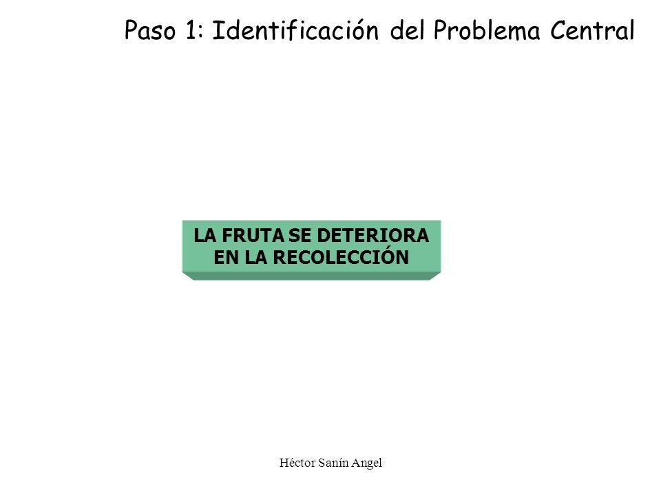 PASO 1 Identificar el Problema Central