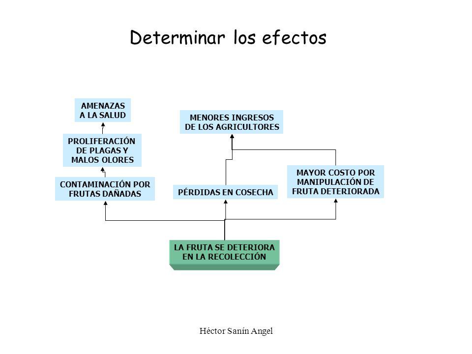 PASO 2 Determinar los efectos