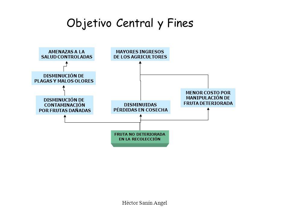 PASO 3 Definir el Objetivo Central y Fines