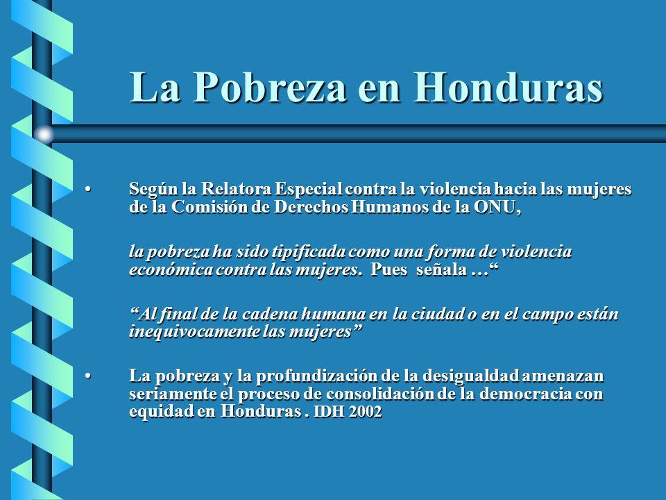 La Pobreza en Honduras Según la Relatora Especial contra la violencia hacia las mujeres de la Comisión de Derechos Humanos de la ONU,Según la Relatora