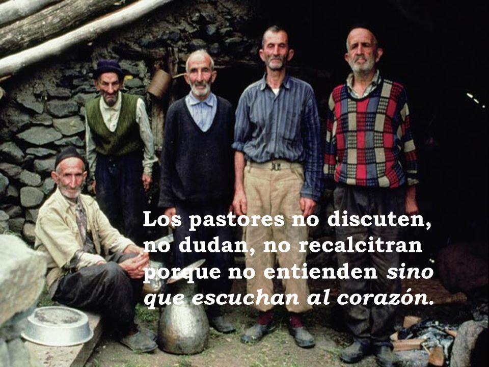 Los pastores no discuten, no dudan, no recalcitran porque no entienden sino que escuchan al corazón.