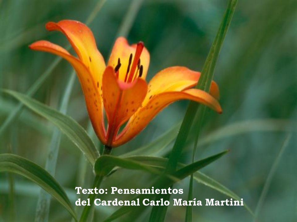 Texto: Pensamientos del Cardenal Carlo María Martini