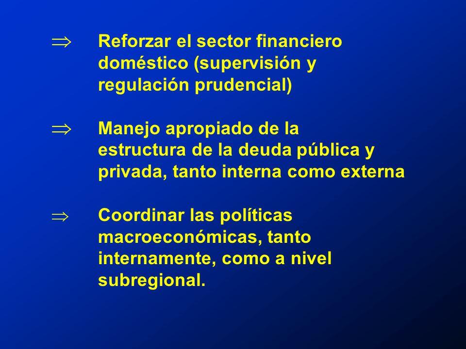 Reforzar el sector financiero doméstico (supervisión y regulación prudencial) Manejo apropiado de la estructura de la deuda pública y privada, tanto interna como externa Coordinar las políticas macroeconómicas, tanto internamente, como a nivel subregional.
