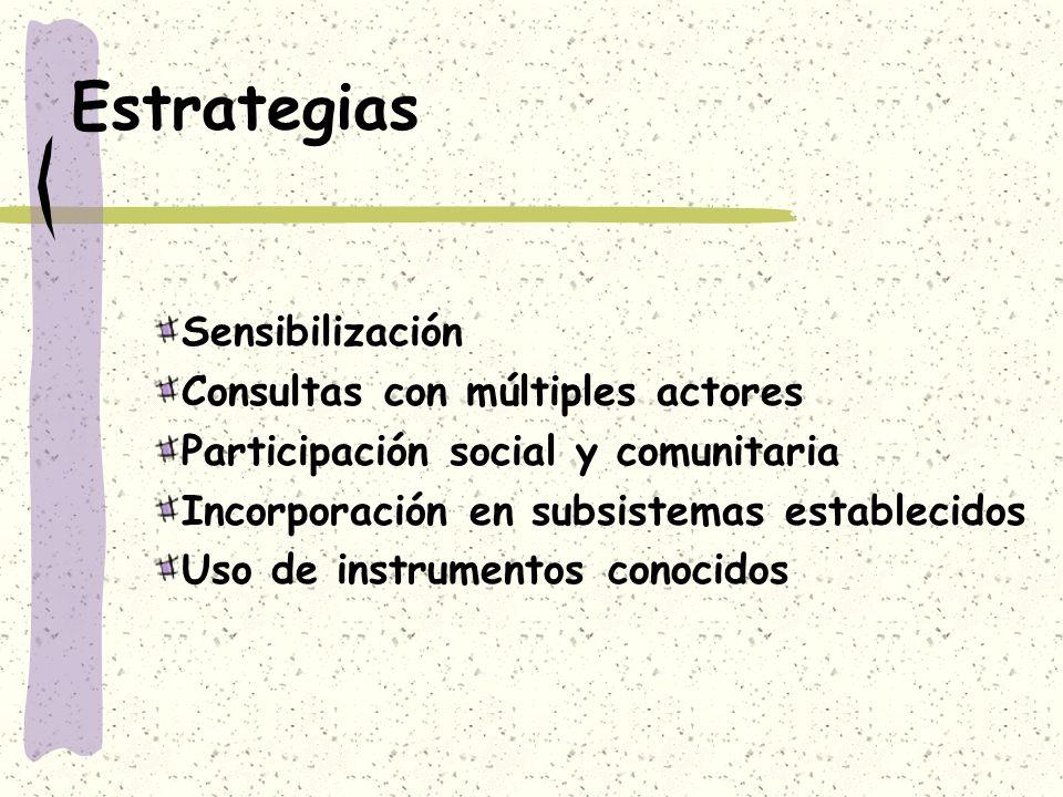 Estrategias Sensibilización Consultas con múltiples actores Participación social y comunitaria Incorporación en subsistemas establecidos Uso de instru