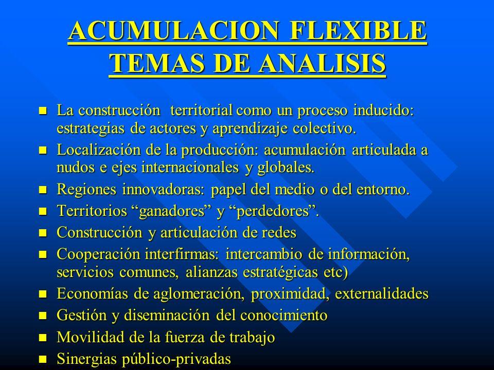 ACUMULACION FLEXIBLE TEMAS DE ANALISIS n La construcción territorial como un proceso inducido: estrategias de actores y aprendizaje colectivo. n Local