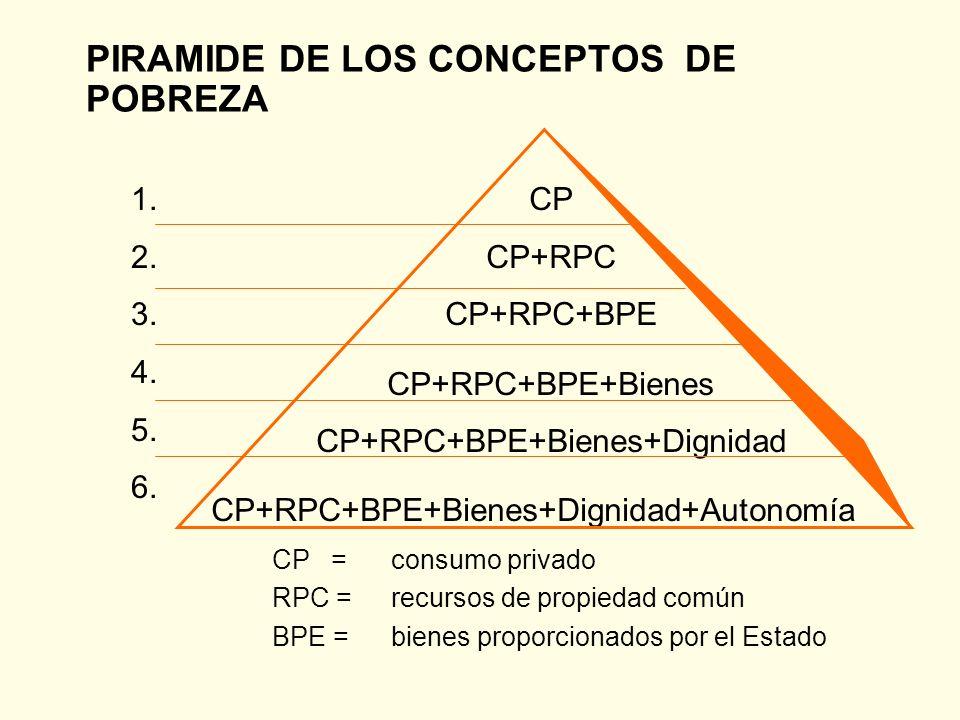Múltiples dimensiones de la pobreza Se vincula a todos los ámbitos de intervención política Su cruce con los factores étnicos y raciales Su cruce con la dimensión territorial