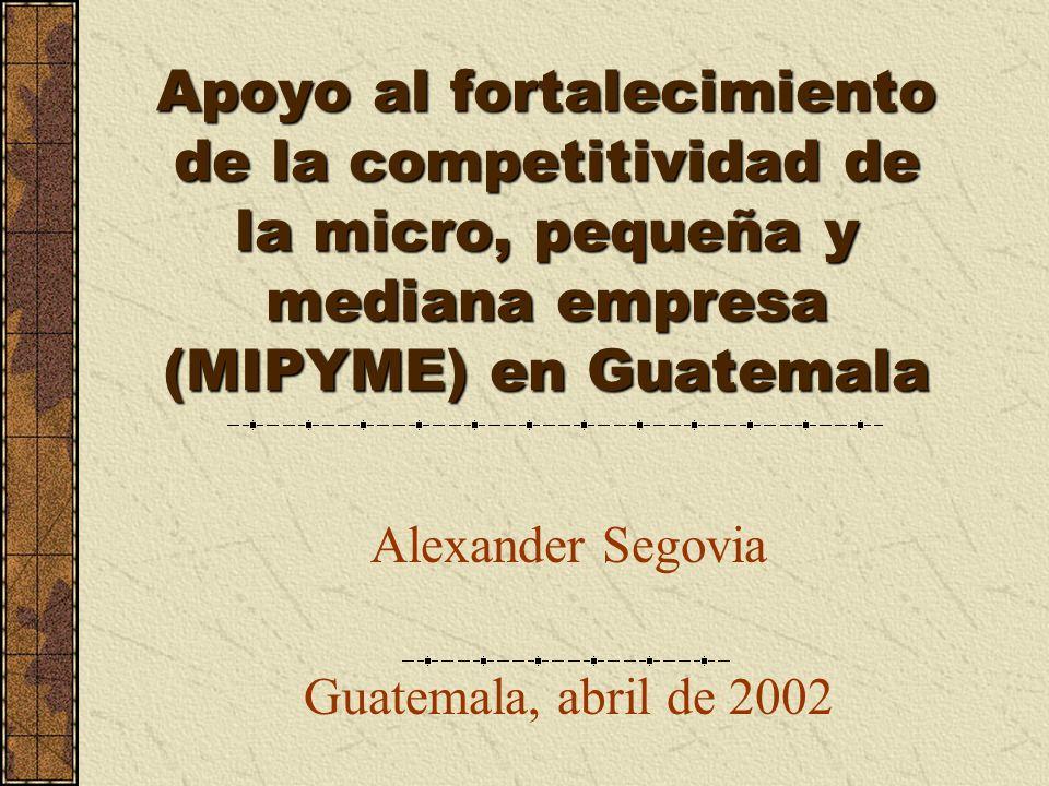 Apoyo al fortalecimiento de la competitividad de la micro, pequeña y mediana empresa (MIPYME) en Guatemala Alexander Segovia Guatemala, abril de 2002