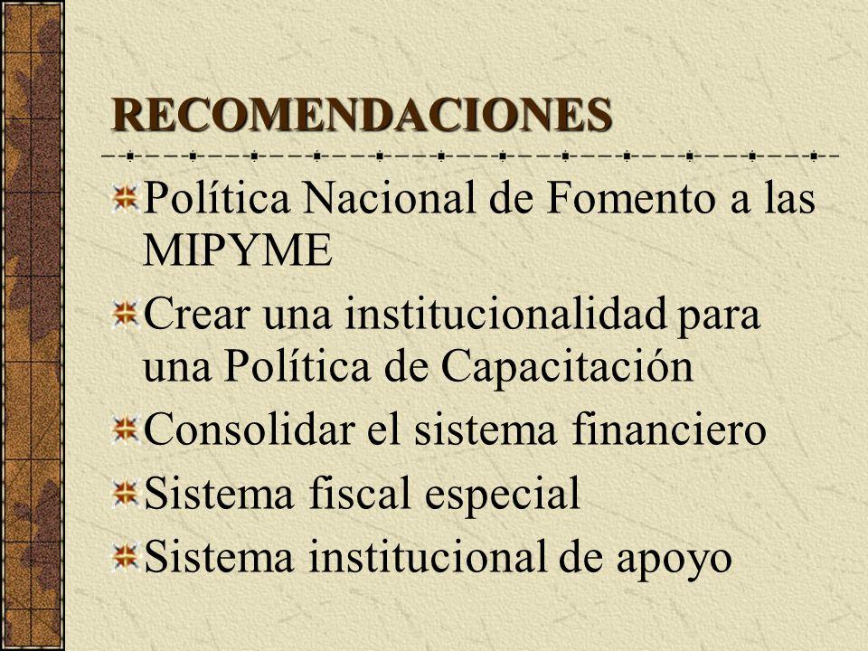 RECOMENDACIONES Política Nacional de Fomento a las MIPYME Crear una institucionalidad para una Política de Capacitación Consolidar el sistema financiero Sistema fiscal especial Sistema institucional de apoyo