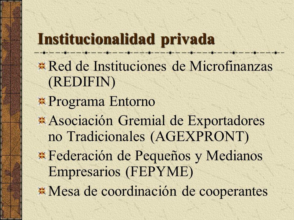 Institucionalidad privada Red de Instituciones de Microfinanzas (REDIFIN) Programa Entorno Asociación Gremial de Exportadores no Tradicionales (AGEXPRONT) Federación de Pequeños y Medianos Empresarios (FEPYME) Mesa de coordinación de cooperantes