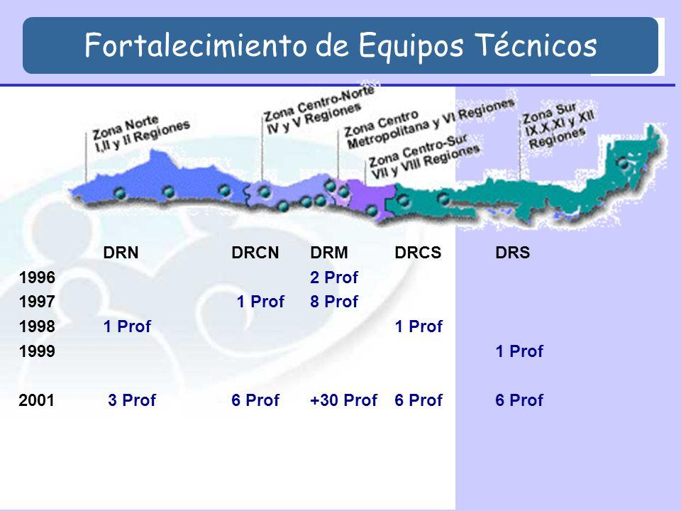 DRNDRCNDRMDRCSDRS 19962 Prof 1997 1 Prof 8 Prof 19981 Prof1 Prof 19991 Prof 2001 3 Prof 6 Prof+30 Prof6 Prof6 Prof Fortalecimiento de Equipos Técnicos