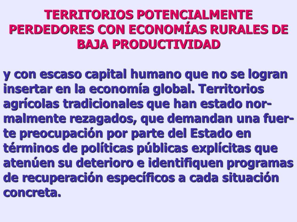 TERRITORIOS POTENCIALMENTE PERDEDORES QUE SE HAN DESINDUSTRIALIZADO y no han sido capaces de reconvertir, en toda su magnitud, sus economías locales.