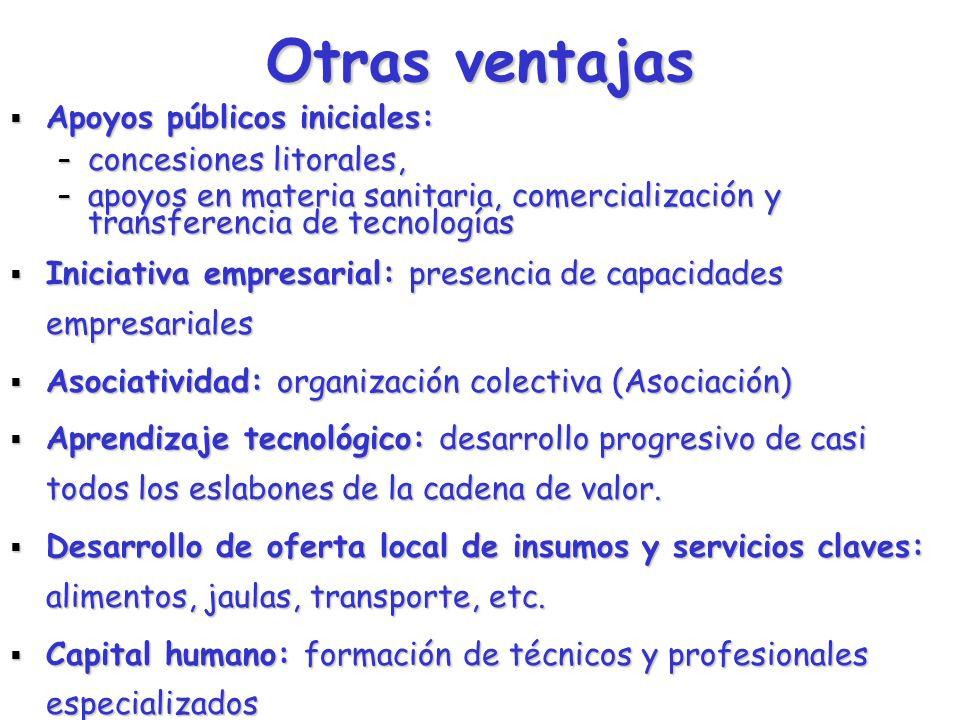 INDUSTRIA DEL SALMON EN CHILE Factores de competitividad Recursos naturales y medioambiente: Recursos naturales y medioambiente: – – Bahías: profundas