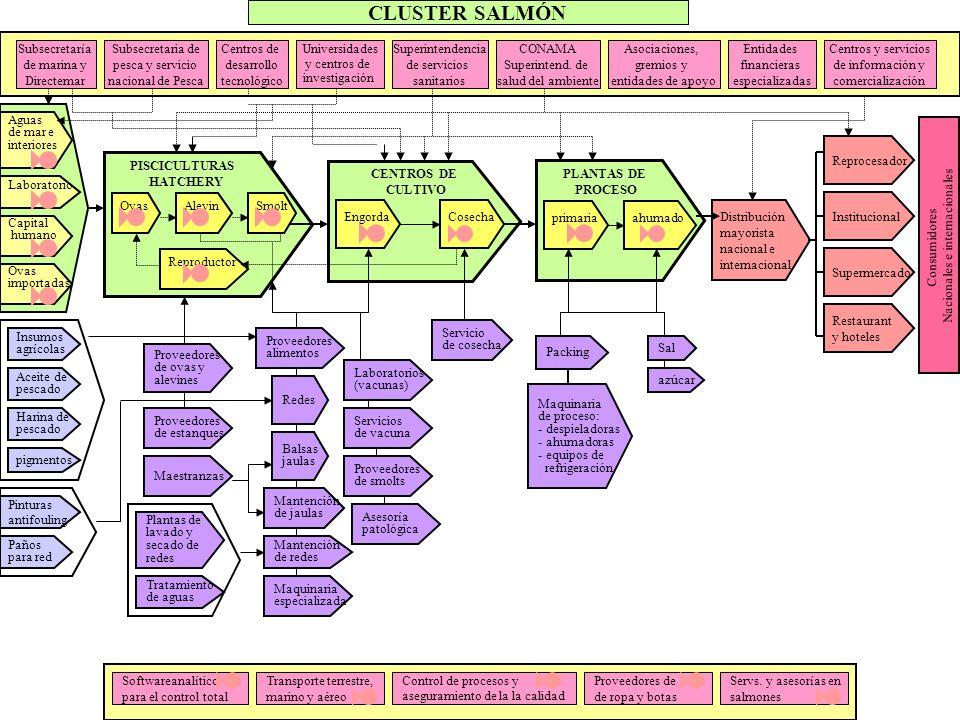 Proceso productivo Fases: Hatchery Pisciculturas - - Ovas - - Alevines - - Smolts Centros de Cultivo - - Cultivo - - Engorda - - Cosecha Plantas de Pr