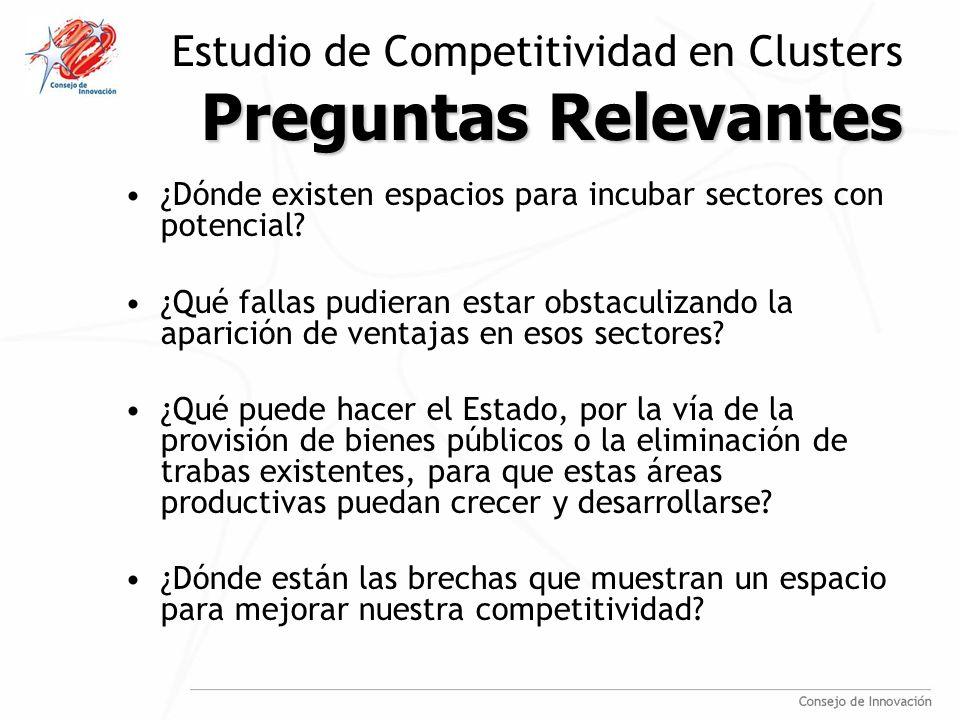 Preguntas Relevantes Estudio de Competitividad en Clusters Preguntas Relevantes ¿Dónde existen espacios para incubar sectores con potencial.