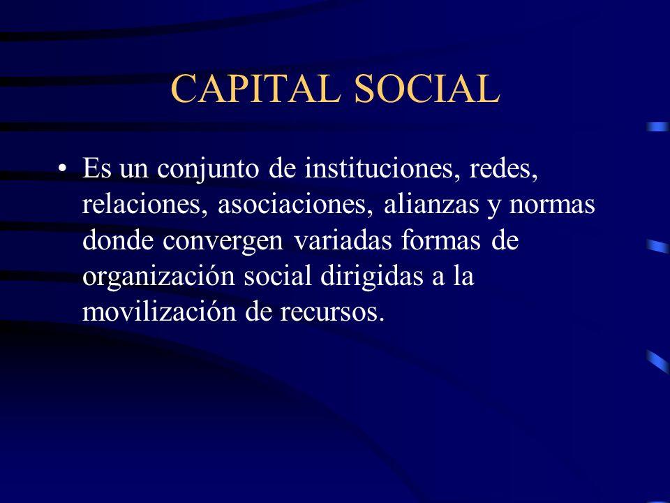 CAPITAL SOCIAL Es un conjunto de instituciones, redes, relaciones, asociaciones, alianzas y normas donde convergen variadas formas de organización soc